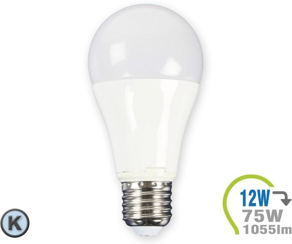 E27 LED Lampe 12W A60 Kaltweiß