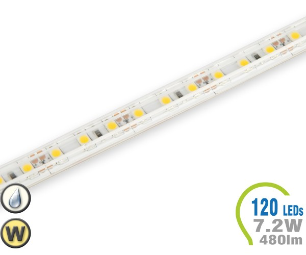 LED Stripe 120 LED/m 480 lm/m IP65 Warmweiß
