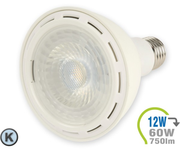 E27 LED Lampe 12W Spot PAR30 Kaltweiß